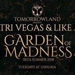 Tomorrowland Presents Dimitri Vegas & Like Mike - Opening Party