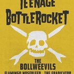 Teenage Bottlerocket at Reggies Rock CLub