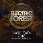 Electric Forest 2018 - First Weekend