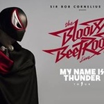 The Bloody Beetroots live - My Name Is Thunder Tour
