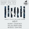 EUROPA Small Steps Release Show  w/ ADJY, Kerry Courtney, Velocirapture, and Nidus Expire